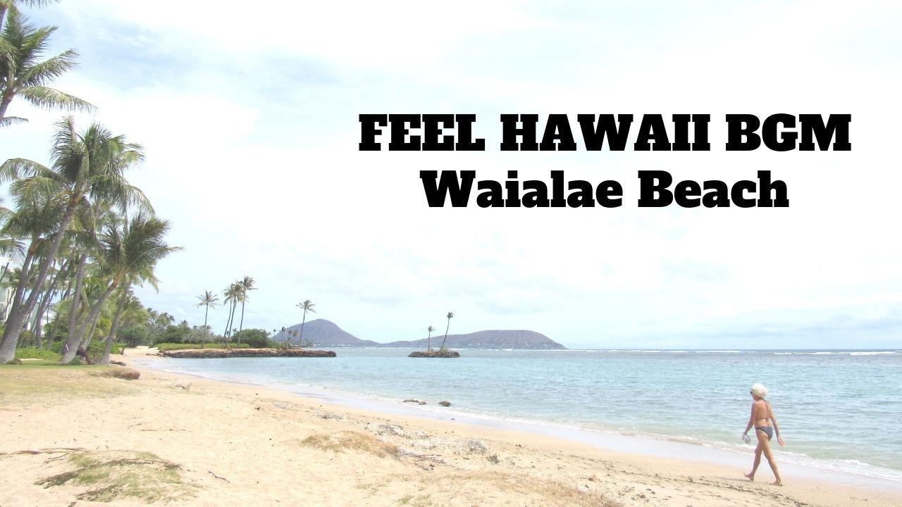 WaialaeBeach